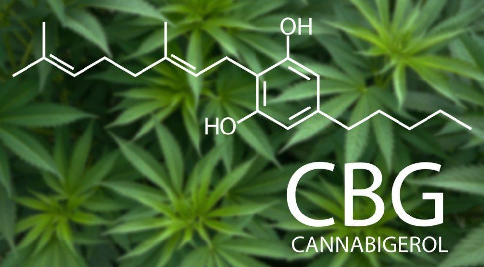 Cannabigerol - CBG