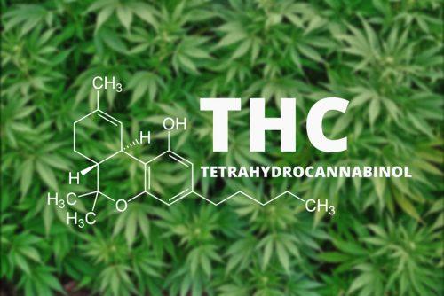 THC-Tetrahydrocannabinol
